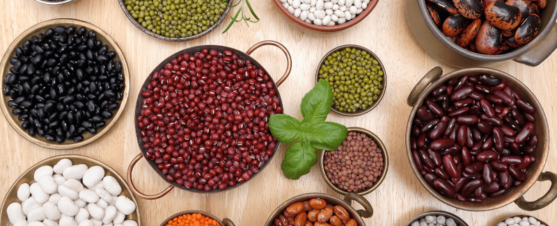 Legumes and nuts