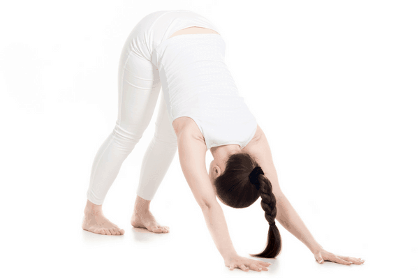 Downward Facing Dog Yoga Pose